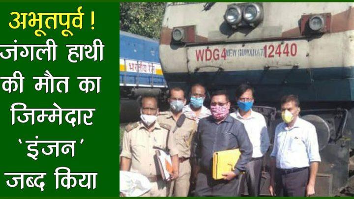 जंगली हाथी की माैतः वन विभाग ने मालगाड़ी का इंजन किया जब्द!